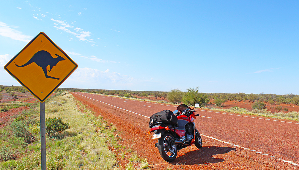 kangaroo road sign northern territory